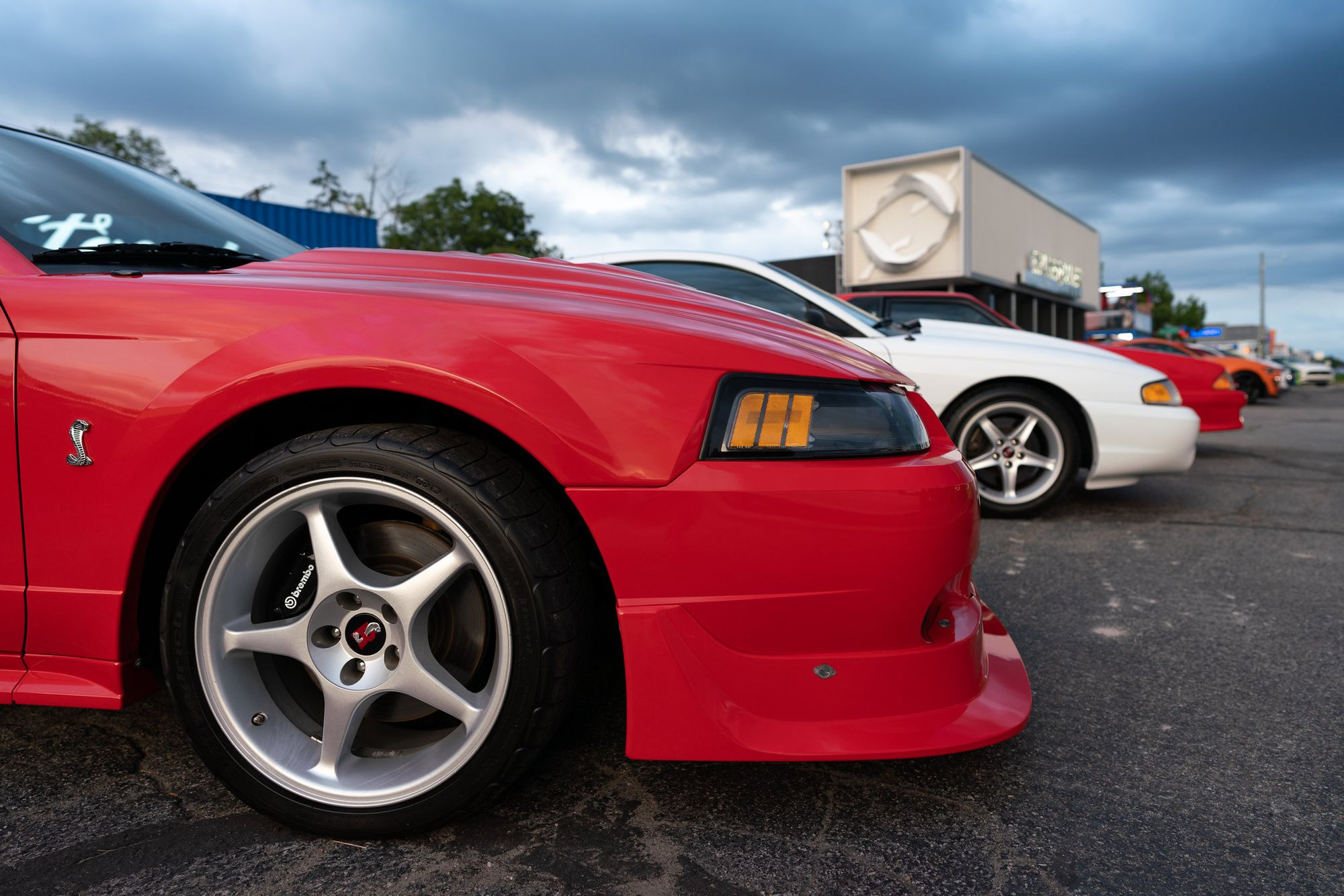 "<img src=""mustangs-woodward.jpg"" alt=""Mustangs at Woodward Dream Cruise"">"