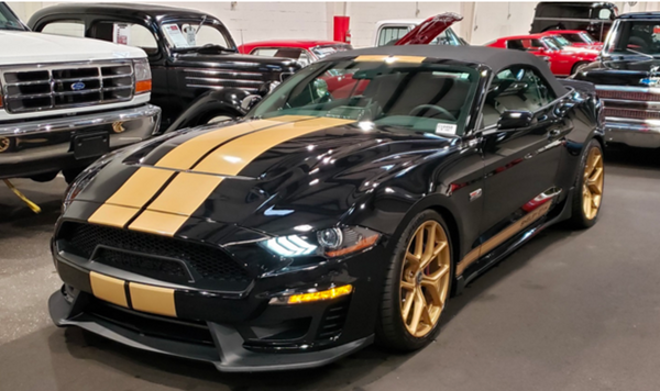 The History of the Hertz Shelby Mustangs at GAA This Weekend