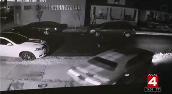 Video Shows That Dodge Muscle Cars Are Criminal Catnip