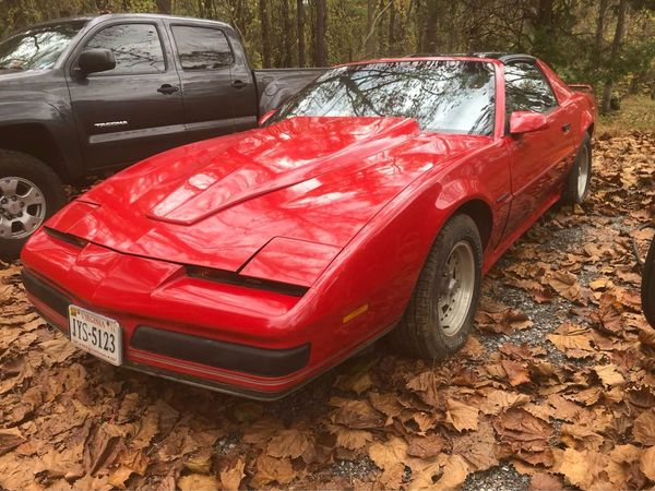 Marketplace Oddity: 1989 Pontiac Firebird Pro/Am